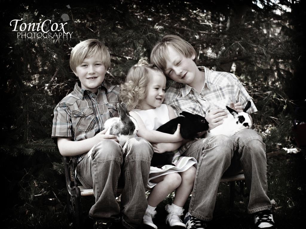 Toni Cox Photography