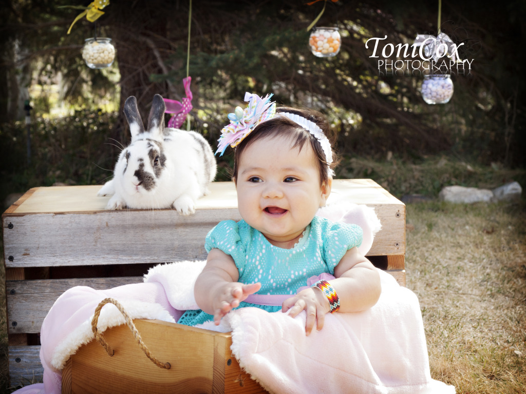 ToniCox Photography